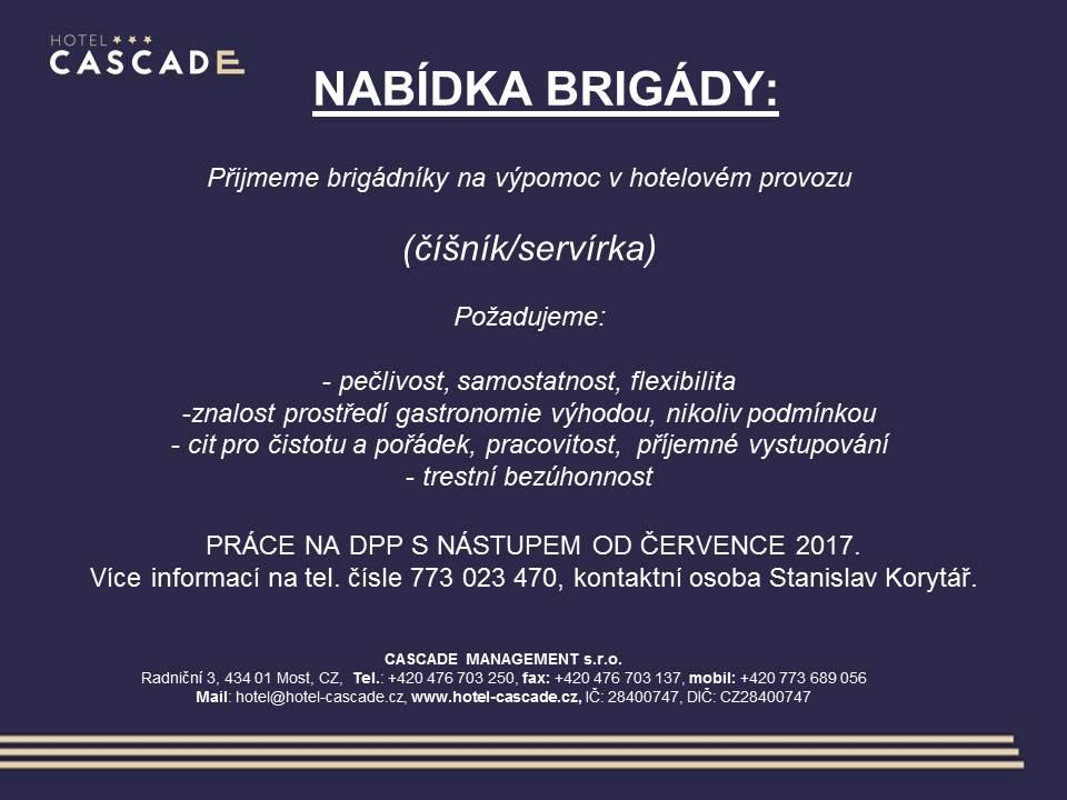 volnamista_brigada